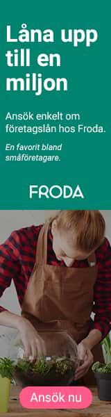 företagslån Froda småföretagare